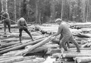 Vid flottning av timmer användes stukyxor för att säkra äganderätten på stockarna.
