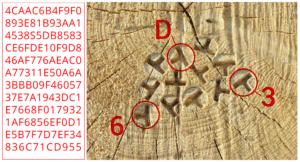 Märkningssystemet OtmetkaID bygger på hexadecimala koder, vilket säkerställer en globalt unik kod till varje stock.