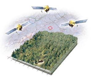 Skördaren tids- och positionsbestämmer varje träd med senaste GNSS-teknik. Denna data sparas med egenskapsdata om trädet och stocken från skördarens apteringssystem, vilka tillsammans bildar OtmetkaIDs grundinformation.