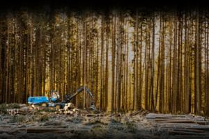 Skogsavverkning tillsammans med OtmetkaID ger garanterad spårbarhet av timmer.