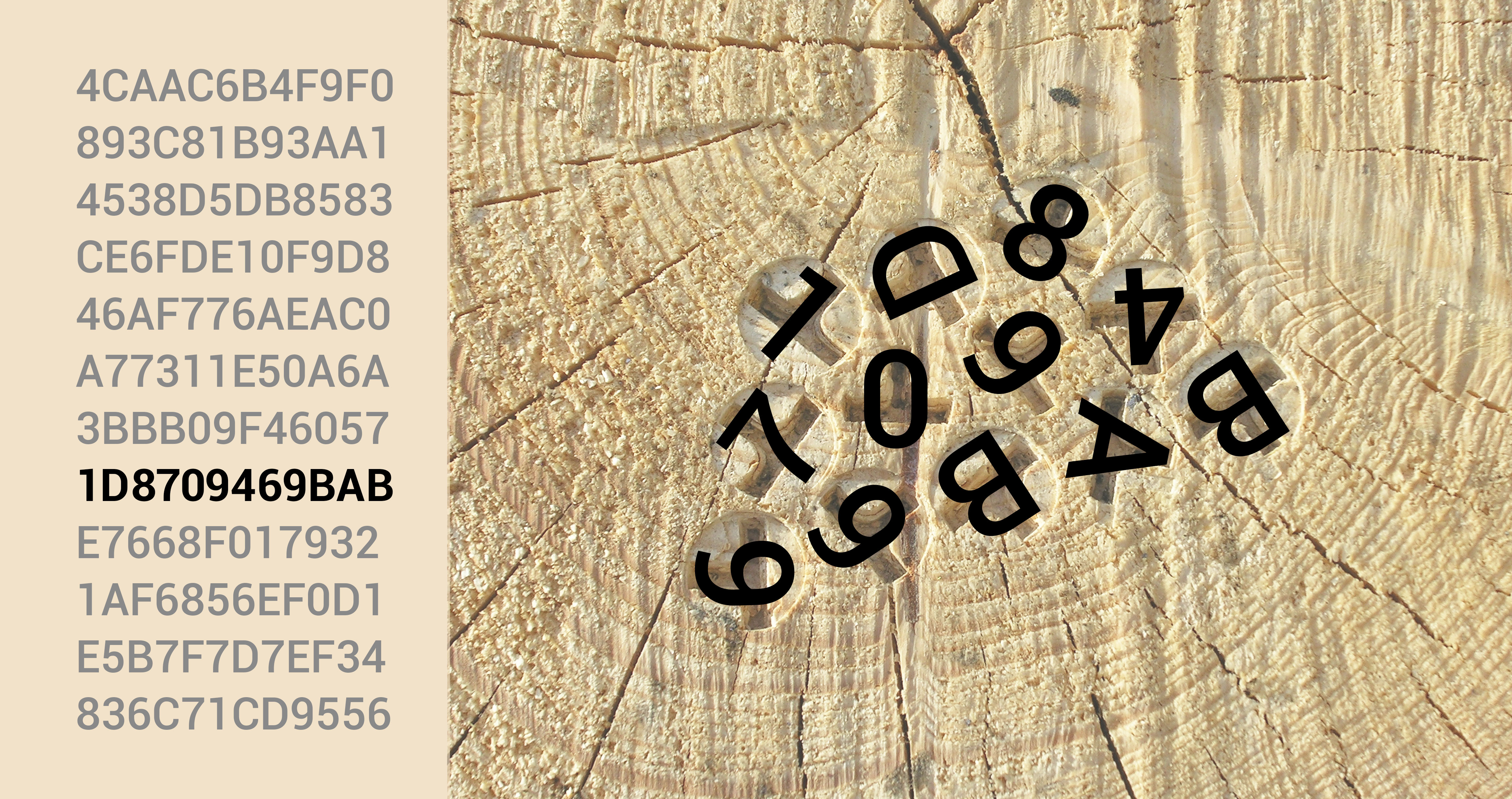 OtmetkaID marking system is based on hexadecimal codes, which ensures that a globally unique code is generated for each log. The data memory also stores a public code (public key), which also has a secret private code (private key).
